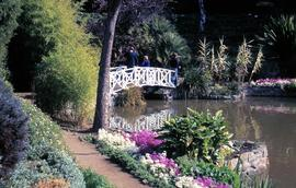 White bridge at botanical gardens