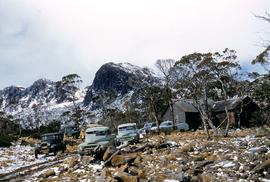 Cars parked at Carr Villa Chalet, at the top of the treeline, near walking tracks to Ben Lomond summit