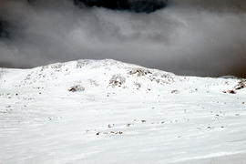 Snow skiing below Legges Tor
