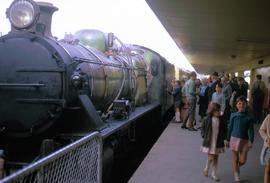Steam train arrives at Hobart Station