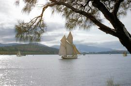 Auxiliary Ketch Lenna at Hobart Regatta 1957