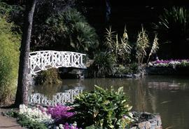 White bridge, reflected in water, at botanical gardens