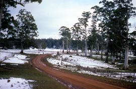 Snow in Victoria Valley
