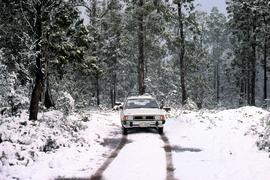 Car on road with snow near Tarraleah