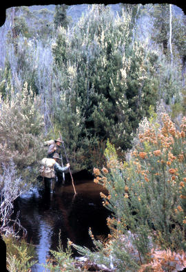 Two bushwalkers testing the waters