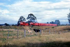 Centenary Train near Perth