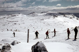 Snow skiers on Ben Lomond 1962