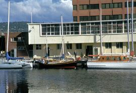 Boats moored at Constitution Dock in front of Marine Board building