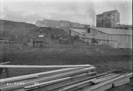 Horse carts and timber at E.Z. Co. Zinc Works