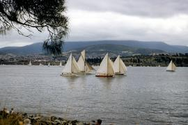 Boat race in Derwent River, 1954