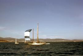 Astor at finish line of Sydney-Hobart Yacht Race