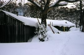 Heavy snowfall at Hobart Walking Club hut at Lake Dobson