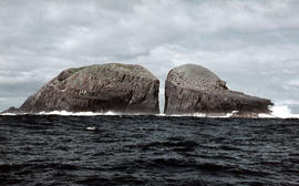Gap between two Friars, off Bruny Island, 1962