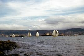 Billowing sails on Derwent