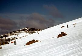 Skiing at Mount Field National Park