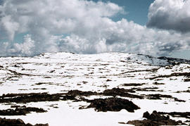 Summit from Ben Lomond plateau 1960