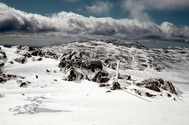 Snow cover on Ben Lomond Plateau