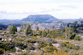 Panoramic view of Mount Rogoona