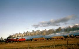 Goods train steams past Perth