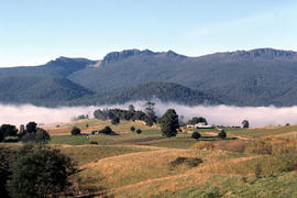 Fog in foothills of Ben Lomond