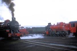 Trains at Hobart roundhouse