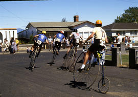 Penny farthing bicycle races at Evandale