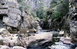 Rockpools in Leven Canyon
