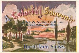New Norfolk : postcard
