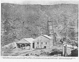 View of the British Zeehan Mine providing a general view including the Spray Main shaft workings, engine house, poppet legs and other works, Zeehan, Tasmnania