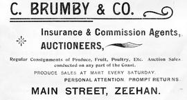 Advertising flyer for C Brumby & Co, auctioneers and insurance agents, Zeehan, Tasmania