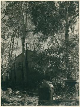 Photograph of Home Hut
