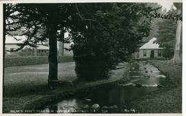 Postcard of the Salmon Ponds