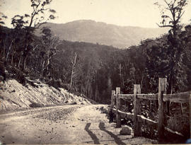 Huon Road with post and rail fence
