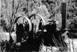 View of abandoned steam boiler in the bush at Crotty, Tasmania