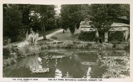 Postcard of Lily Pond, Botanical Gardens