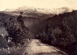 Huon Road with Mt Wellington in snow