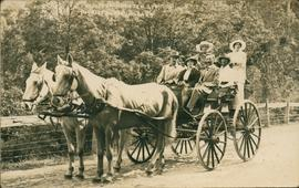 Horse drawn carriage with passengers