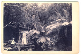 Young lady at Silver Falls, Fern Tree Bower