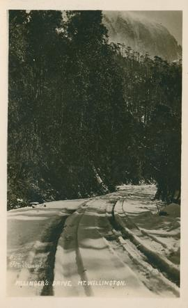 Postcard of Pillinger's Drive, Mt. Wellington