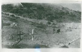Graves at Gallipoli