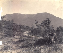 Huon Road with post and rail fence looking to Mt Wellington