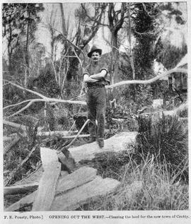 View of male axeman standing on fallen timber in the bush, Crotty, Tasmania.